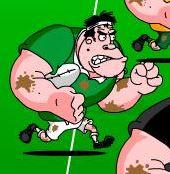 rugby ireland